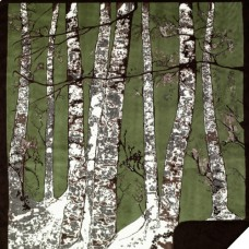 Green Birch Trees by Denali